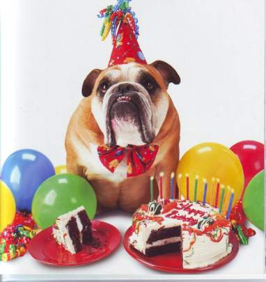 Nice birthday pictures images